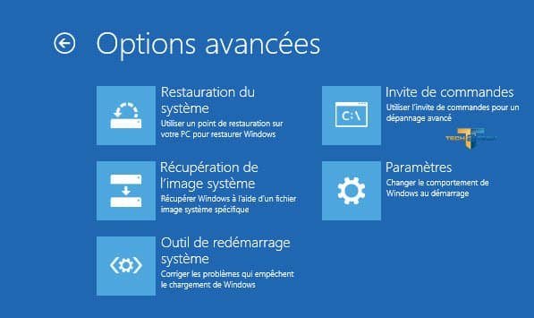 w8-options-avancées