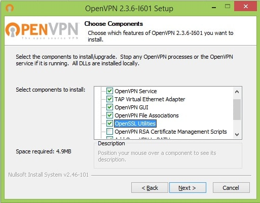 1 - OpenVPN options