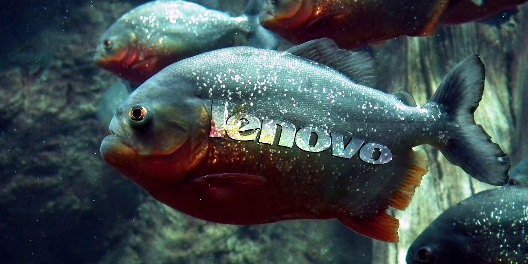 Photo of Adware Lenovo : Comment supprimer SuperFish ?