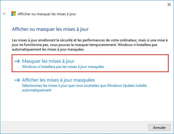 windows-10-Afficher-masquer-update01