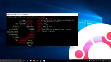 Photo of WSL 2 : Noyau Linux 4.19 sous Windows 10 May 2020 Update